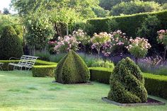 Original topiary shapes add sculptural effect to a peaceful garden.