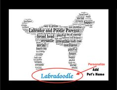 Whether you are looking for Labradoodle artwork, a Labradoodle print or a Labradoodle gift for yourself or a Labradoodle lover, you will find that this artwork fits perfectly in any home.  Description of Labradoodle Artwork - - - - - - -  First, I researched the Labradoodle breed and then I created each illustration that reflects the breeds special traits. An owner can display what makes the Labradoodle unique. Designed with love and then carefully matted, this piece comes ready to frame…