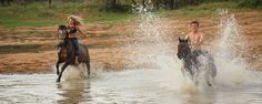Horse riding safaris at Ant's in South Africa Honeymoon Packages, Honeymoon Destinations, Berg, Horse Riding, Scuba Diving, South Africa, Safari, African, Horses