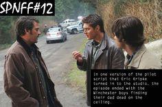 Resultado de imagem para fun facts about supernatural