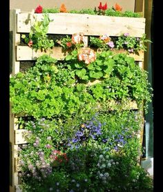 Pallet gardening for your patio!!
