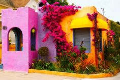 Mexico colour