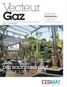Des solutions gaz pour tous les usages... une vitrine du gaz dans la restauration Vectuer GAz N°113