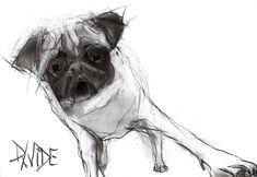 Valerie Davide original dog Onslow