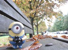 #autumn #minion | Flickr - Photo Sharing!
