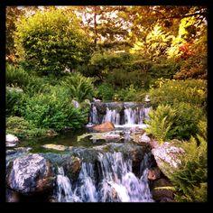 Setagaya Park in Wien, Wien Family Day, Day Trips, Vienna, Waterfall, Park, Outdoor, Wine, Amor, Outdoors