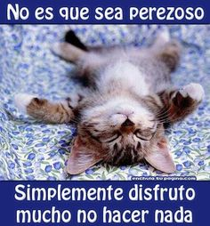 It's not that I am lazy.  It's simply because I really enjoy doing nothing!