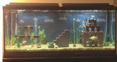 Aquariumario!