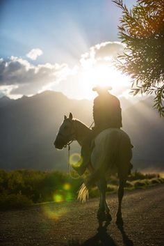 Spectacular scenery when horse riding in South Africa. Lessons, beach rides…