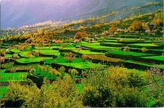 Longevidad . Valle de Hunza
