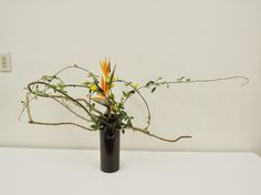 つるもの 花材 - Google 検索