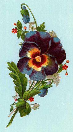 Flowers212