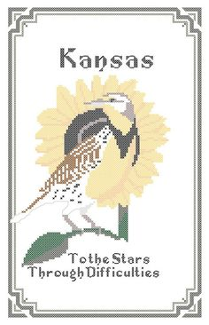 Sure wish i knew how to cross stitch. :/ Kansas state motto to the stars through difficulties