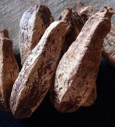 Dried Pods - Mahogany Pods Natural 16 pieces- Gourds