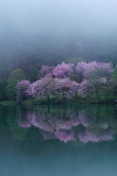 Nagano, Japan dazzling expression