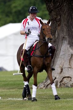 Prince Harry - Prince Harry at a Polo Match