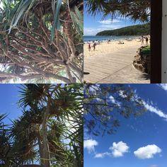 Perfect Days in Noosa, Queensland!