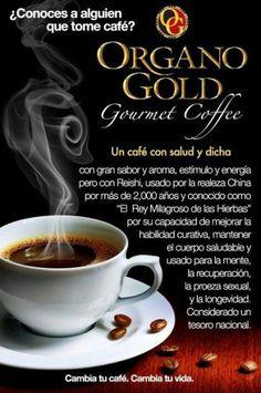 como tomar cafe organo gold para bajar de peso