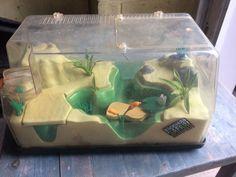 je vend un insectarium backyard safari. un jouet pour enfants pour jouets à l'extérieur, mettre des insectes etc. Canada, Safari, Aquarium, Ants, Insects, Toys, Children, Goldfish Bowl, Aquarius