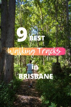 Best walking tracks in Brisbane! Here are my favourite places to go for a walk in Brissy. From bush walks to pretyy parks and gardens. Ways To Travel, Travel Tips, Australia Travel Guide, Cheap Holiday, Explore Travel, Solo Travel, Cool Places To Visit, Brisbane, Travel Destinations