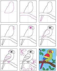 Easy Drawings For Kids, Drawing For Kids, Art For Kids, Cow Drawing Easy, Drawing Step, Drawing Board, Parrot Drawing, Parrot Painting, Paisley Drawing