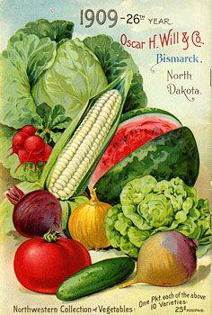 Fruit illustration vintage seed packets 34 Ideas for 2019 Vintage Labels, Vintage Postcards, Vintage Gardening, Organic Gardening, Gardening Hacks, Retro Poster, Poster Vintage, Vintage Seed Packets, Seed Packaging