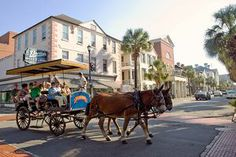 Upper King St. - Charleston, SC