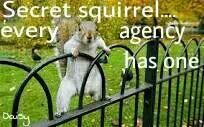 Secret Squirrel & Secret Ninja Sh*t