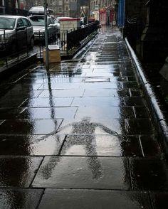Goldsworthy's rain '