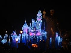 Sleeping Beauty's Winter Castle  Never been to Disneyland for Christmas...pretty!