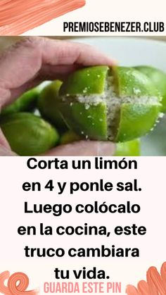 Cut a lemon into 4 and add salt. Then place it in the kitchen, this trick will change your life. health down rnrnSource by Health And Nutrition, Health Fitness, Menu, Essential Oil Uses, Home Remedies, Cucumber, Salt, Tips, Feng Shui