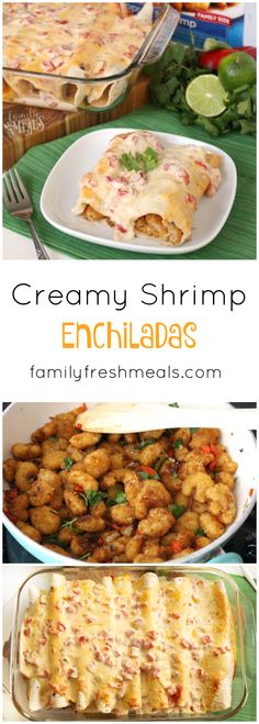 Creamy Shrimp Enchiladas recipe. SO EASY to make and my family LOVES these!
