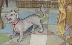 Horae ad usum Parisiensem.  Date d'édition :  1475-1500  Latin 1173  Folio 77v