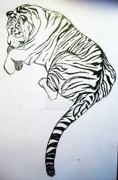 I like the position of this tiger for a tattoo Tiger Tattoo, I Tattoo, Awesome Tattoos, Cool Tattoos, Body Is A Temple, Creative Tattoos, Cool Logo, White Ink, Puma