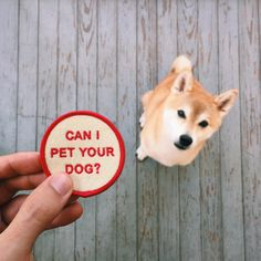 can I pet your dog patch