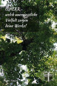 Weisheit ... einer der Eigenschaften Gottes ... http://www.gottes-wort.com/weisheit-gottes.html  Psalm 104,24