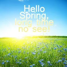 31 best myfavoriteseason called spring xoak images on hello spring long time no see floral flowers spring quote mightylinksfo