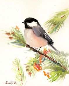 Chickadee on piine tree Original watercolor by ORIGINALONLY, $28.00