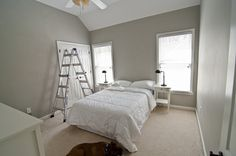 Valspar Woodlawn Colonial Gray - master bedroom/guest bathroom