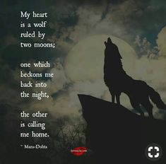 """"""" How the moon calls her beast. Her animal spirit. She was like the lone wolf who lost her home and found a new one yet the wild called her spirit. I am that wolf with a spirit that will forever crave to soar! True Quotes, Great Quotes, Inspirational Quotes, Quotes Quotes, Motivational, Wolf Spirit, Spirit Animal, Phrase Cute, Lone Wolf Quotes"""