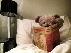 Misery Bear into Dostoevsky