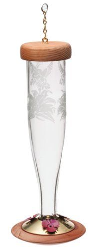 Schrodt Designs HBLPC Hummingbird Paradise Lantern Feeder Clear *** Want to know more, click on the image. This Amazon pins is an affiliate link to Amazon.