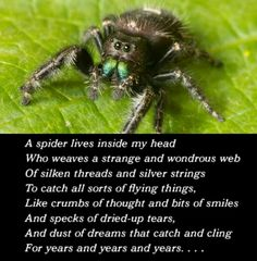 the spider and the fly poem pdf