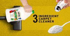 3 Ingredient Carpet Cleaner