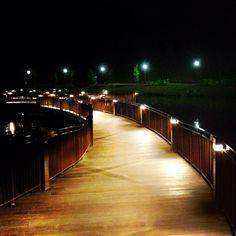 Night Bridge over Punggol Waterway