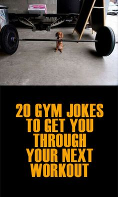 If none of your gym routines have given you the washboard abs you desire, try this collection of funny gym posters instead. We hear they are great for giving your abs a great workout.