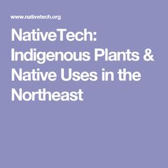 NativeTech: Indigenous Plants & Native Uses in the Northeast