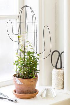 Ursprünglicher Tutor in Form eines Kaktus - PLANÈTE TUTOS Original tutor in the form of a cactus - P Plant Crafts, Ideias Diy, Cactus Flower, Cactus Cactus, Green Plants, Topiary, Plant Decor, Garden Projects, Indoor Plants