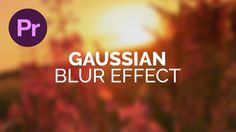 In this tutorial, we\'re going to learn how to add a gaussian blur effect in Adobe Premiere Pro.
