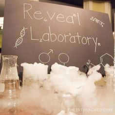 Science Theme Gender Reveal Party